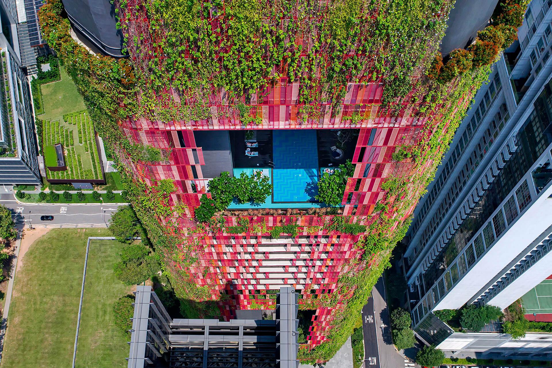 Oasia Hotel Singapore More Sports More Architecture