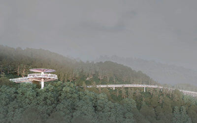 Xiamen Footpaths